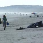 Beach Scenic Charleston, SC
