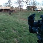 Newman Farm
