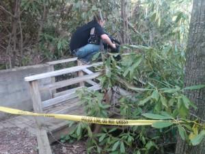 Camera crew filming crime scene